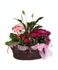Bright Blooming Basket