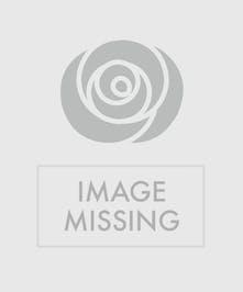 Designer's Choice Uniontown, PA