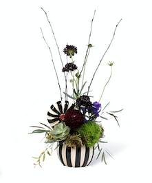 Striped Pumpkin Uniontown (PA) Neubauer's Flowers