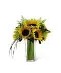 Sunshine Daydream™ Bouquet