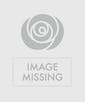 Valentine's Day Bright Mix Roses - Garden Length