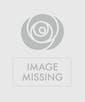 Valentine's Day White Roses - Garden Length