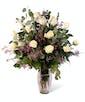 White Dozen Roses - Premium
