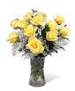 Yellow Dozen Roses - Garden Length