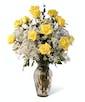 Yellow Dozen Roses - Long Stemmed